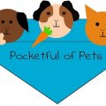 Pocketful of Pets