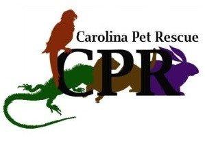 Carolina Pet Rescue