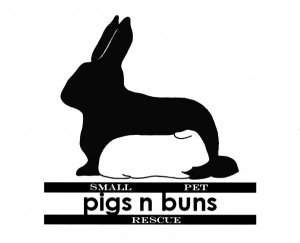 Pigs n Buns Small Pet Rescue