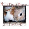 4 Lil Pigs n Buns